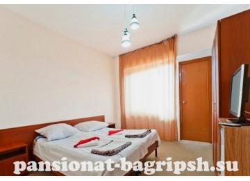Пансионат «Багрипш», «Стандарт 2-местный 1-но комнатный» вид на море